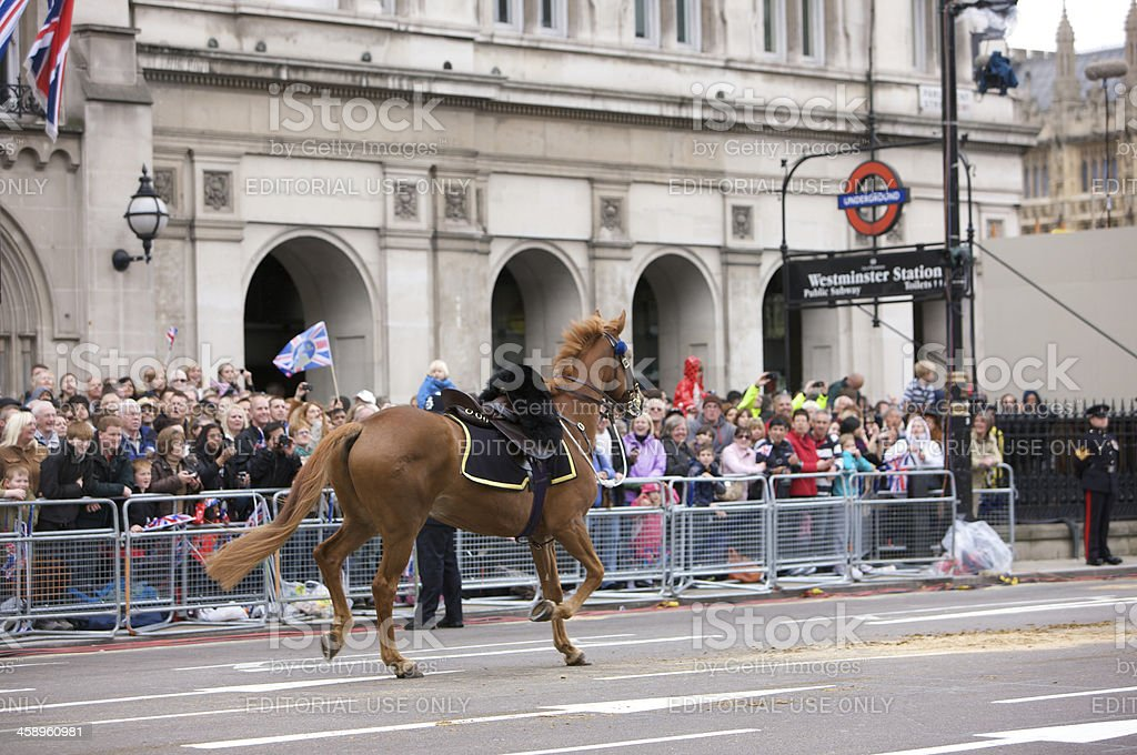 Stray Horse on Parliament street at The Queen's Diamond Jubilee royalty-free stock photo