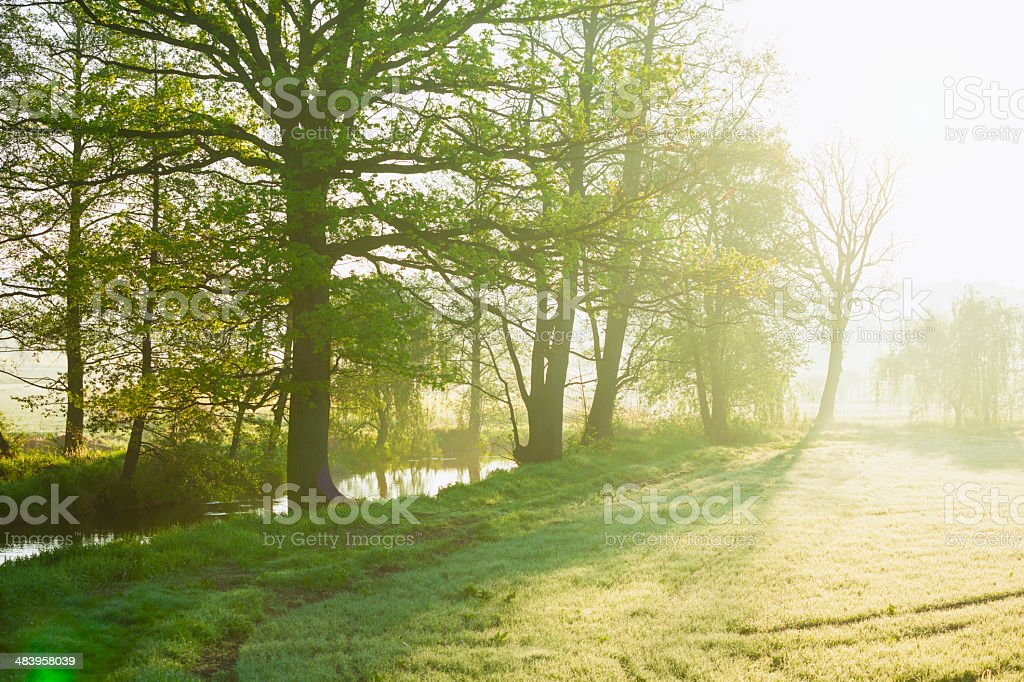 Stream among fields stock photo