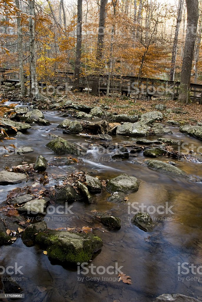 Stream and Fall stock photo