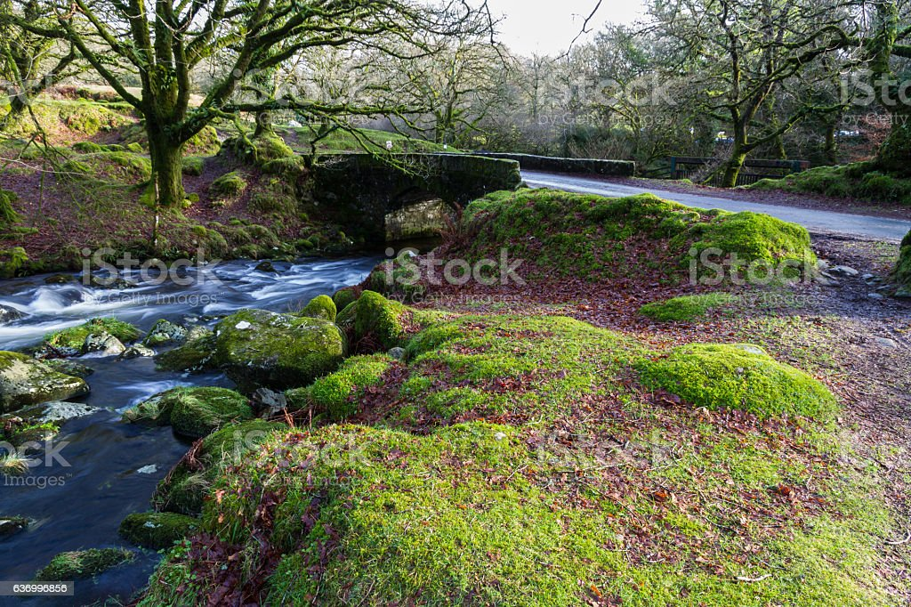 Stream and old bridge, Dartmoor. stock photo