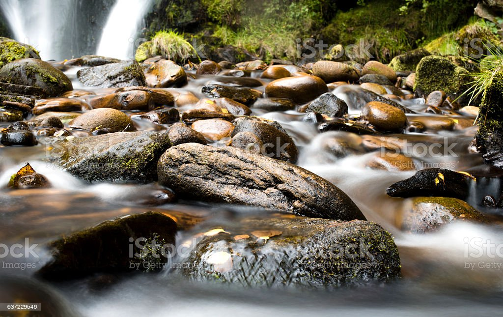 Stream and waterfall in a forest stock photo