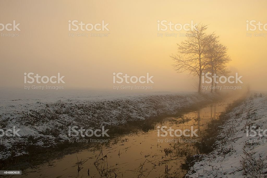 Stream bed in the mist stock photo