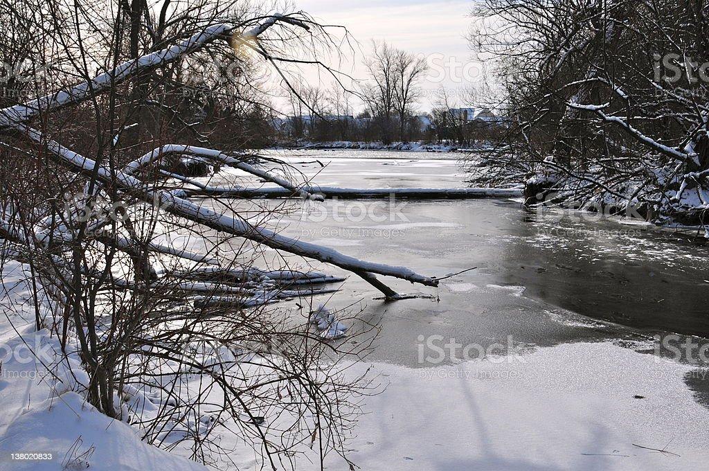 Stream Covered in Ice stock photo