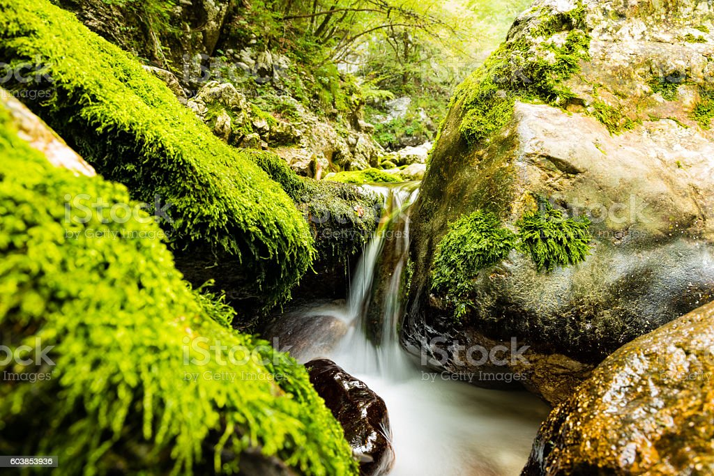 Stream flowing between moss-covered rocks stock photo