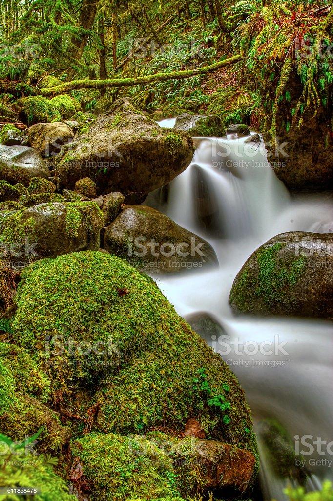 Поток течет по скалам Моховое Стоковые фото Стоковая фотография