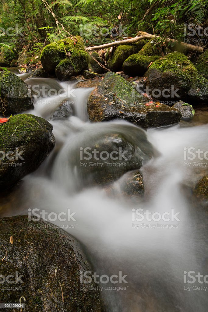stream flowing water over rocks stock photo