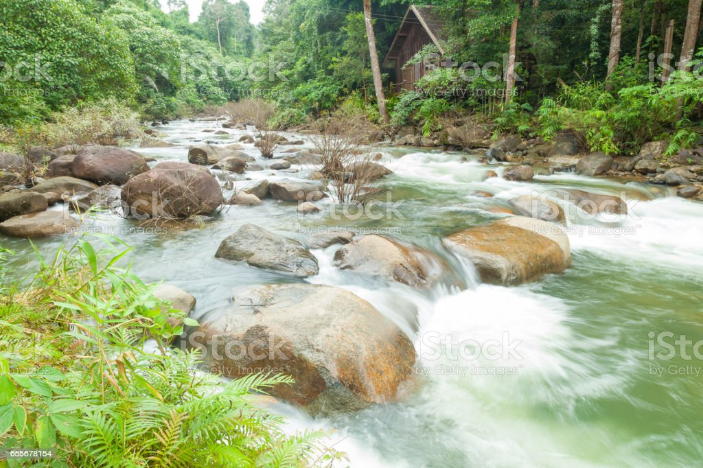 stream flows down from the mountain. stock photo