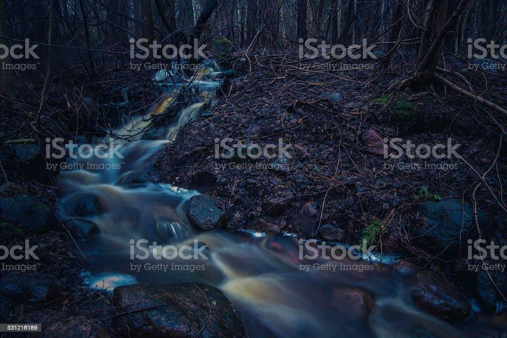 stream in a dark autumn forest stock photo