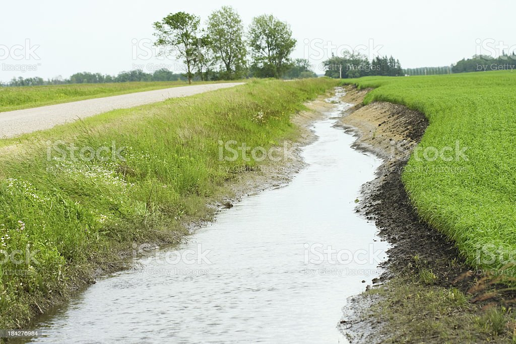Stream in a Ditch royalty-free stock photo