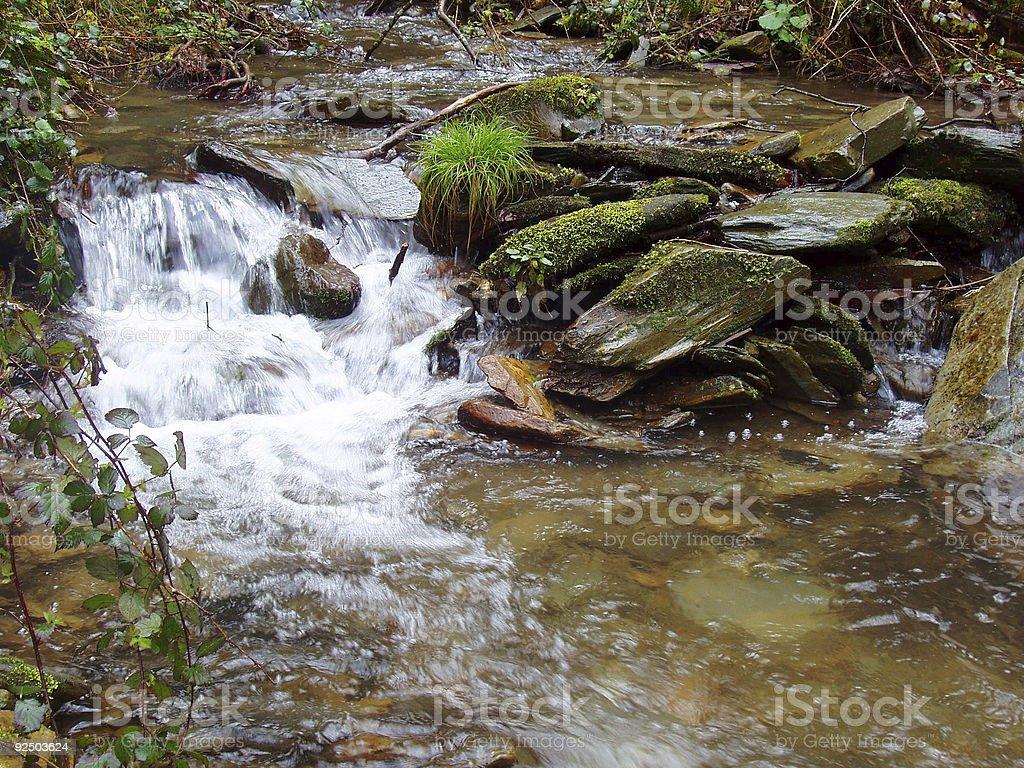 stream in Asturias, forest stock photo