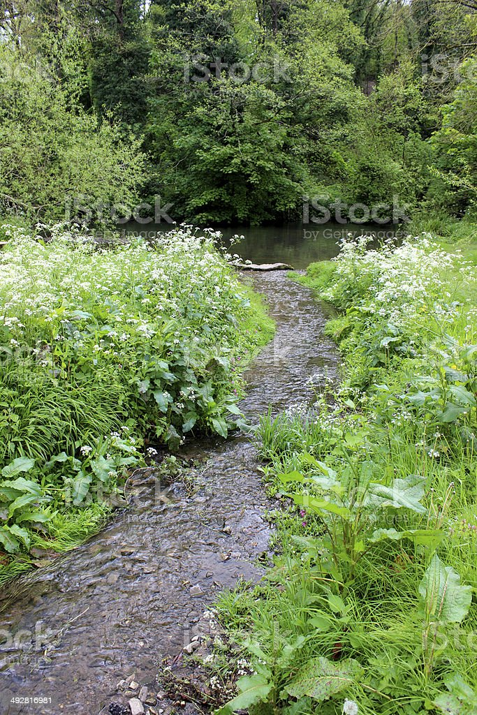 Stream in countryside leading to river, surrounded by wild flowers royalty-free stock photo
