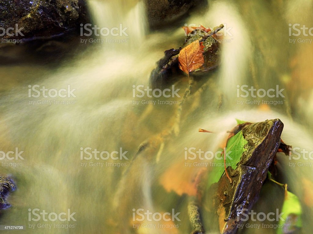 Stream in fall royalty-free stock photo