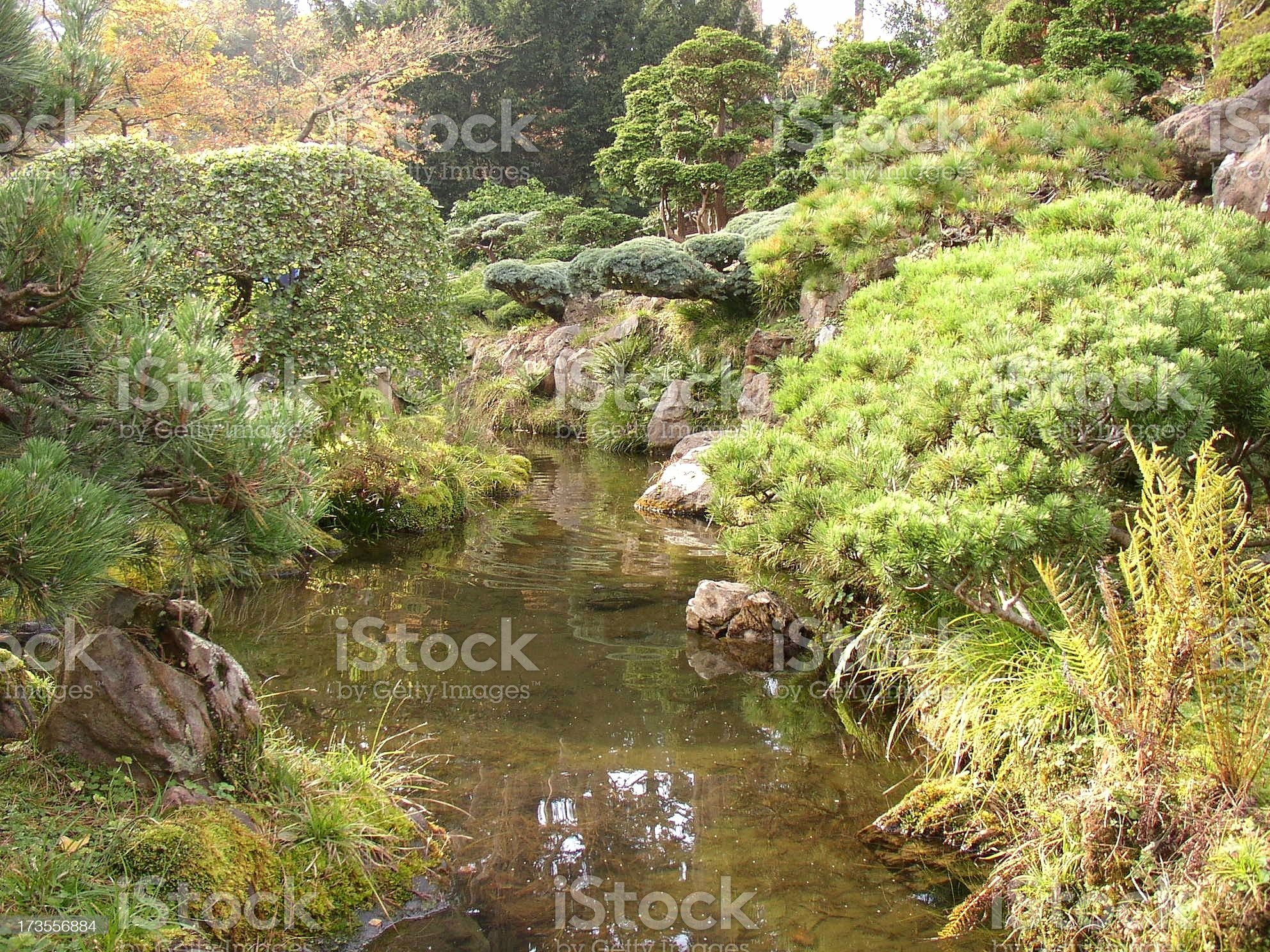 Stream in Japanese Garden royalty-free stock photo