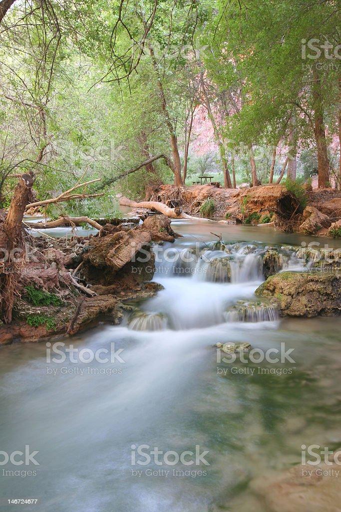 Stream in natural landmark Havasupa stock photo