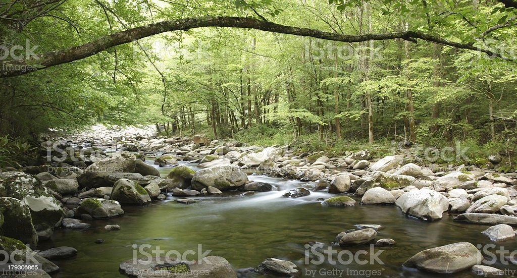 Stream in Smoky Mountains royalty-free stock photo