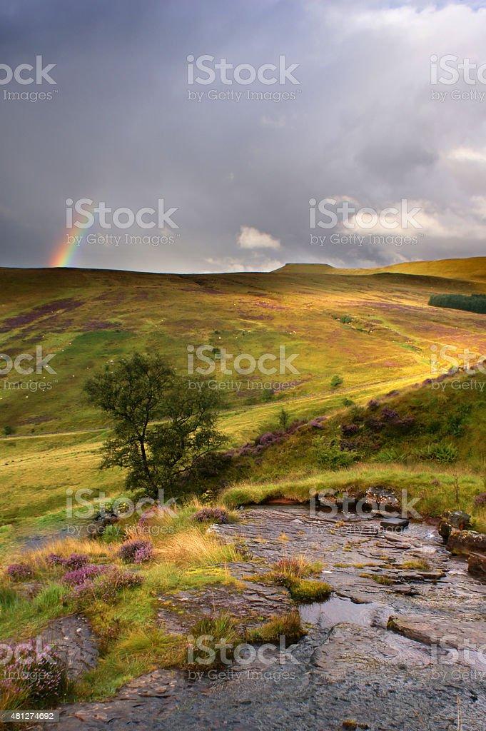 Stream in the Brecon Beacons stock photo