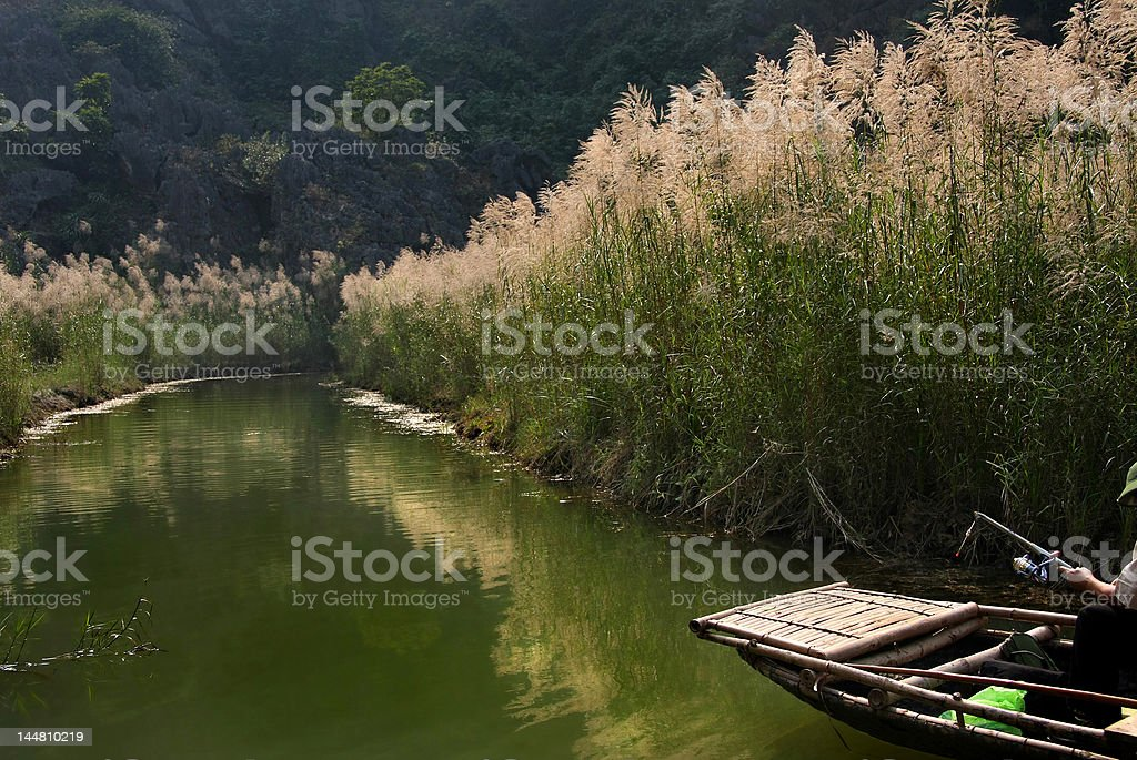 Stream in the sunshine royalty-free stock photo