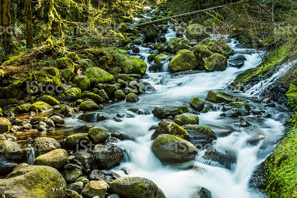 Stream leading to triple falls on hike in Oregon stock photo