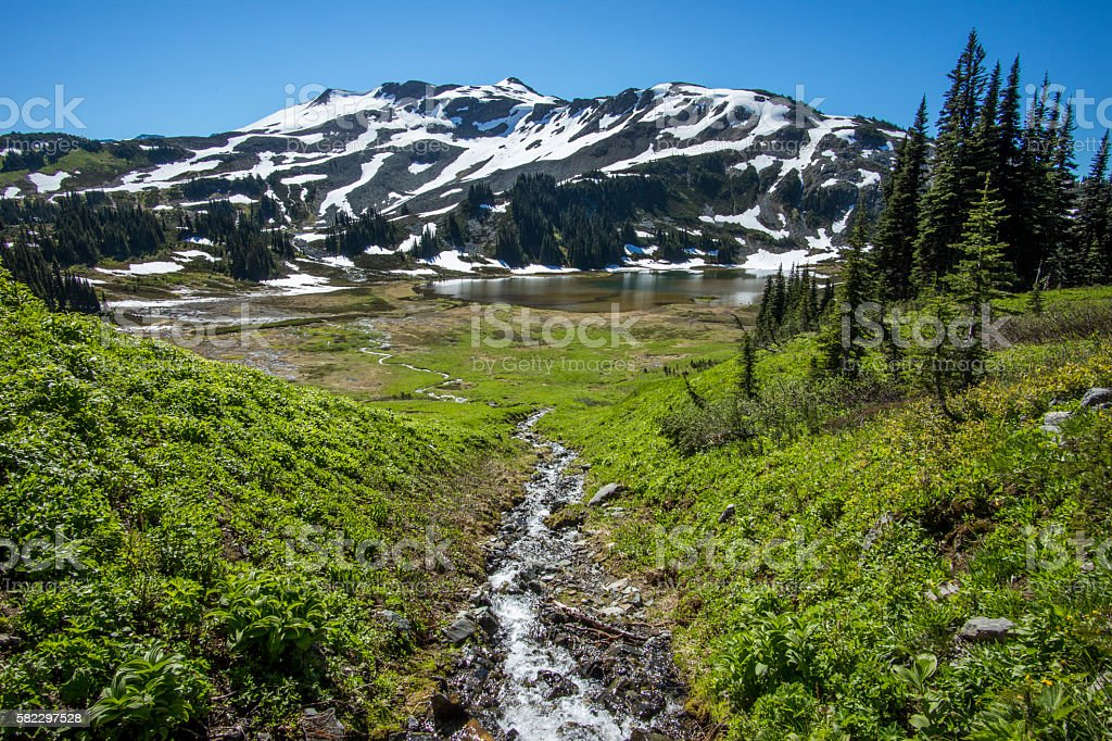 Stream Meadows and Mountains stock photo