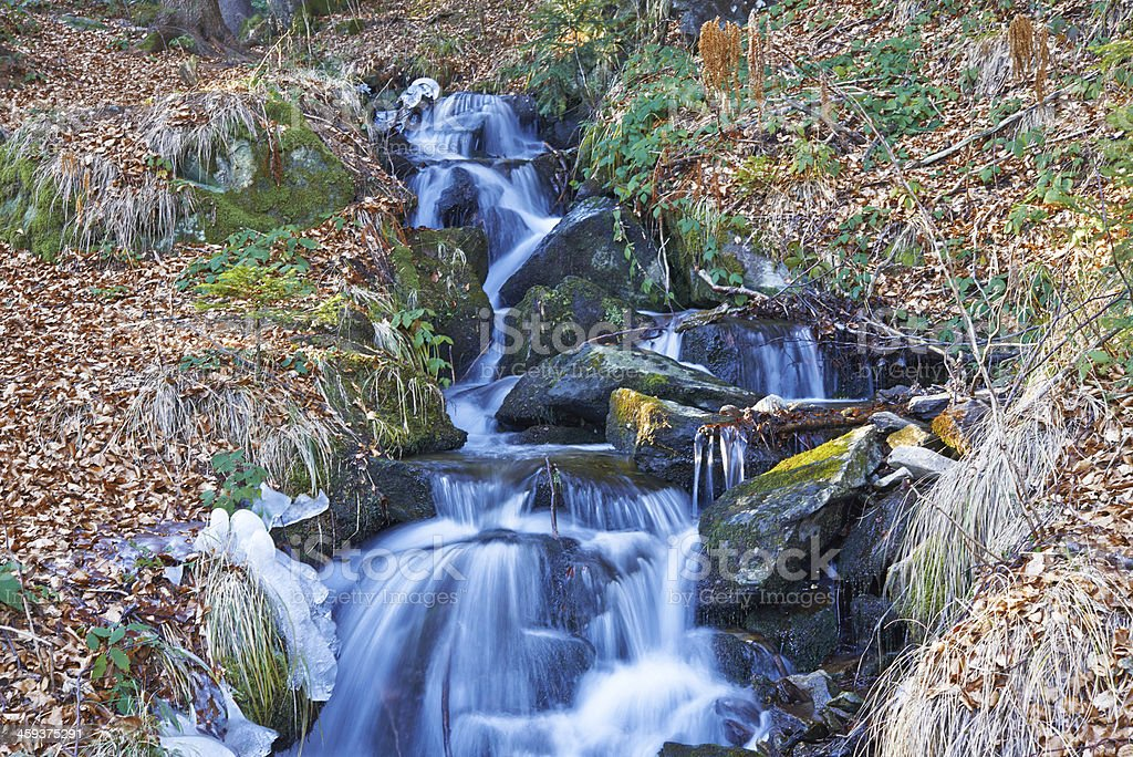 stream on icy morning stock photo