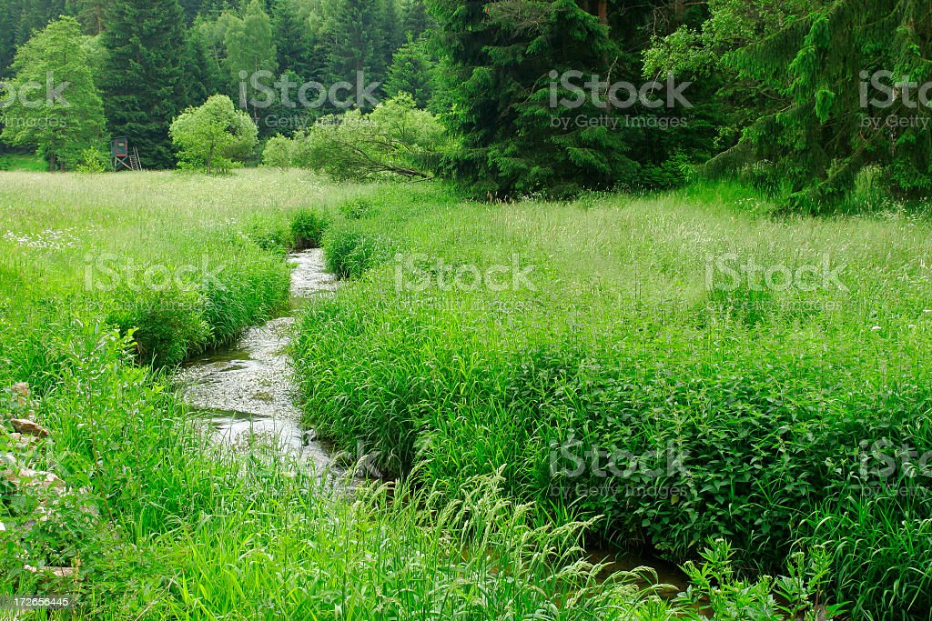 Stream royalty-free stock photo