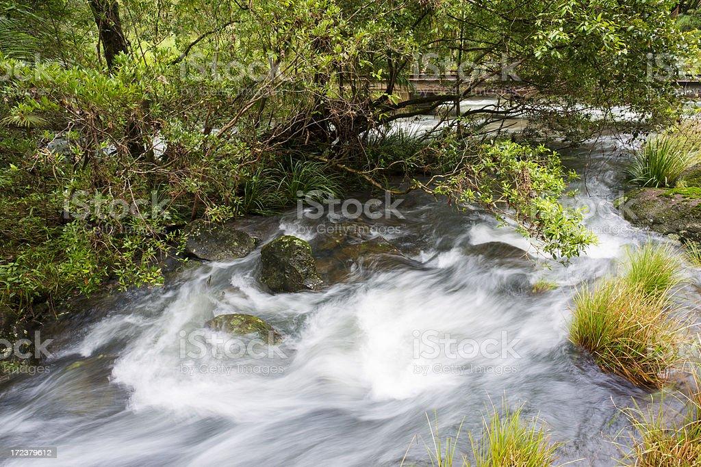 Stream Rapids royalty-free stock photo