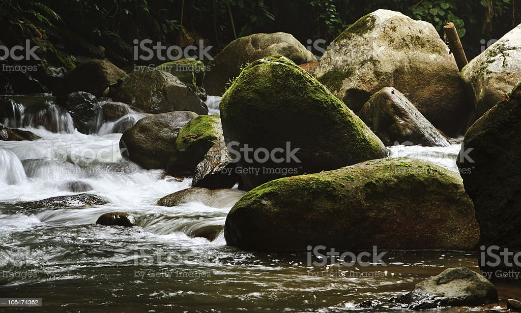Stream running in green creek stock photo