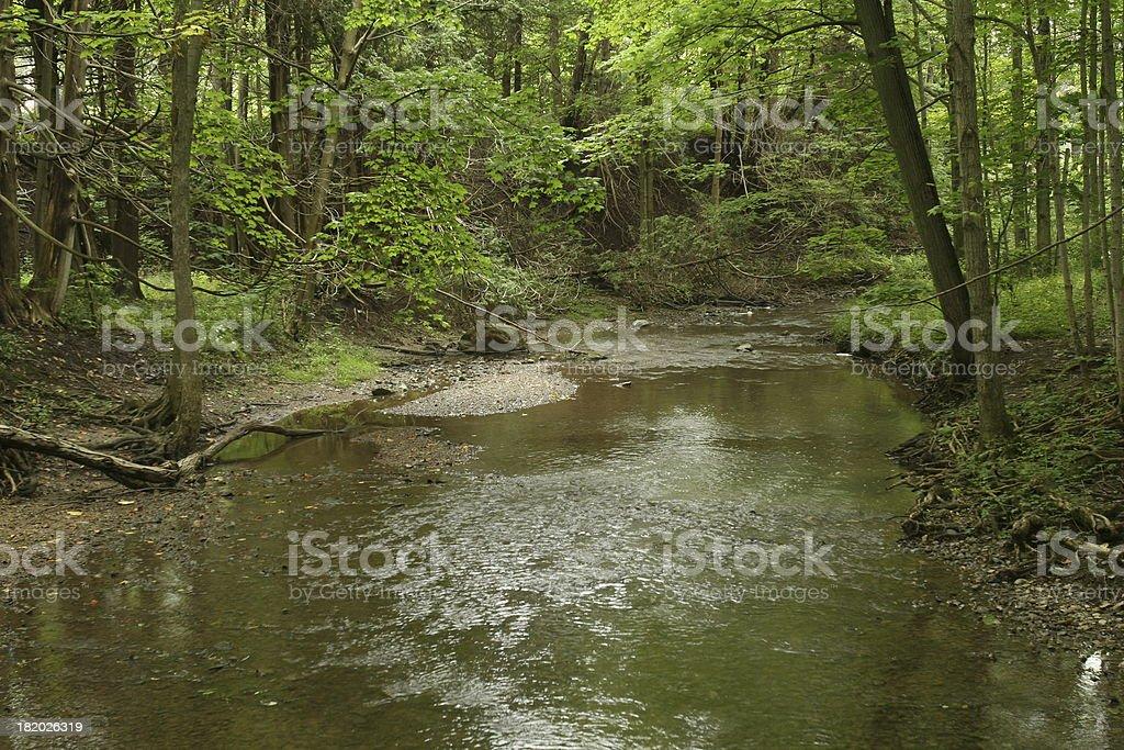 Stream Scenic royalty-free stock photo