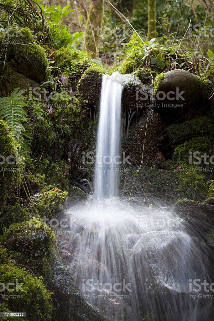 Stream splashing long exposure in green moss and rocks royalty-free stock photo