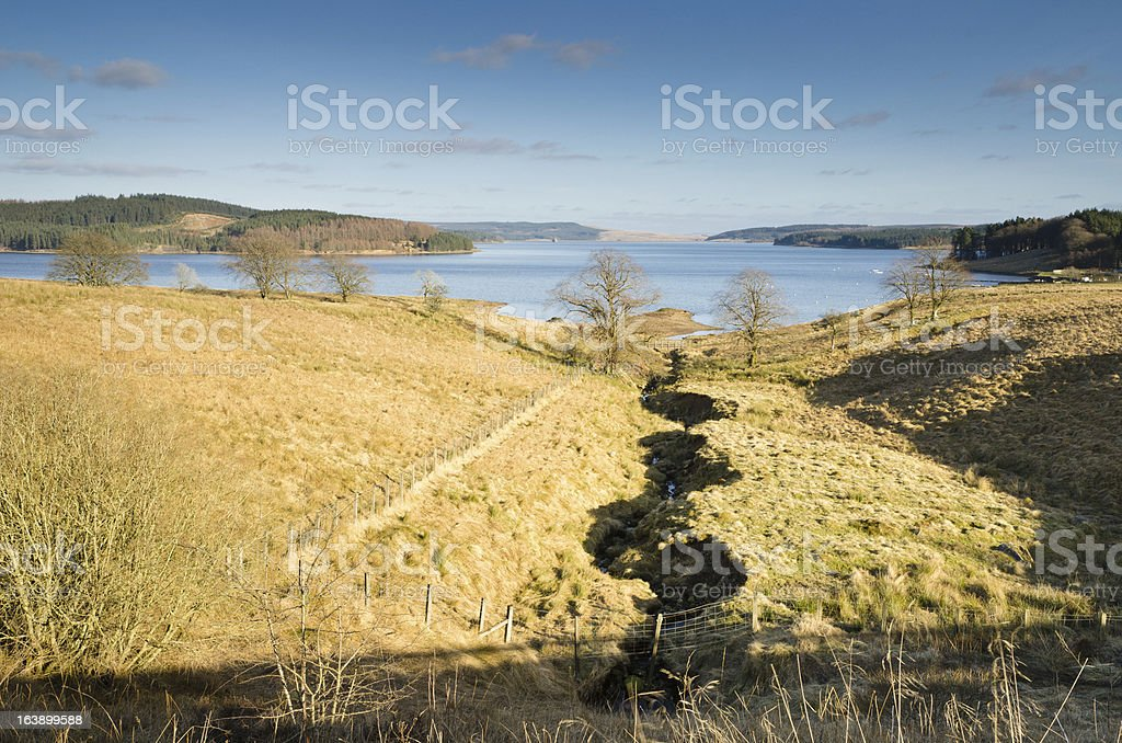Stream to Kielder Water royalty-free stock photo