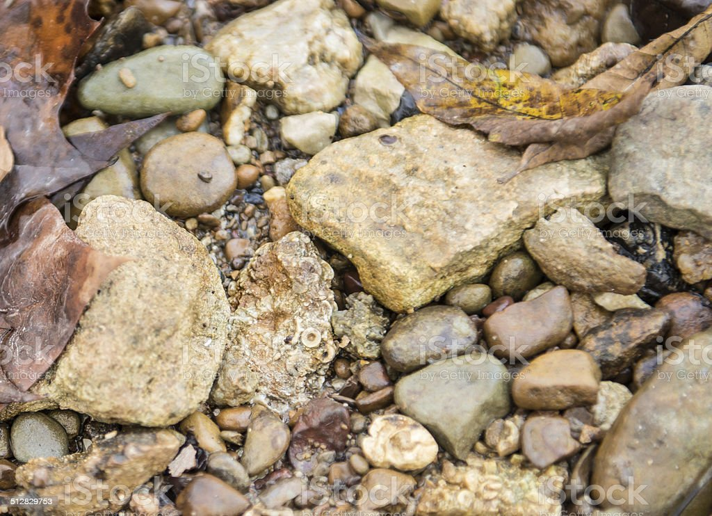 Streambed with rocks and fossils stock photo