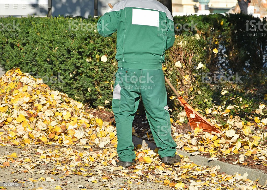Street cleaner works in autumn stock photo