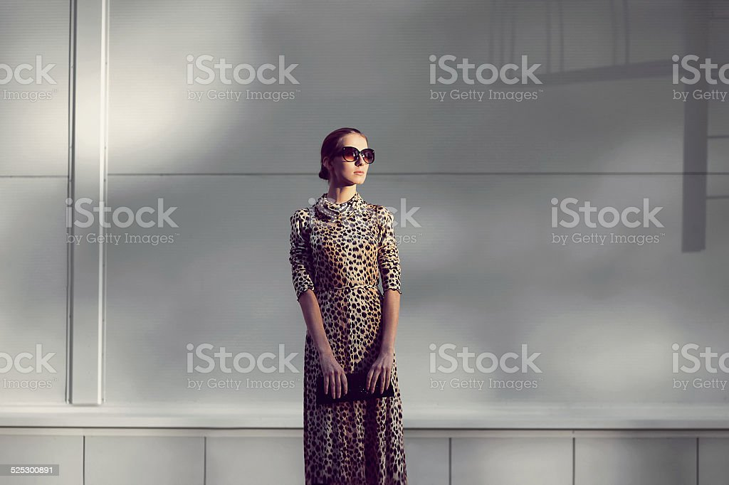 Street fashion concept - pretty elegant woman in leopard dress stock photo