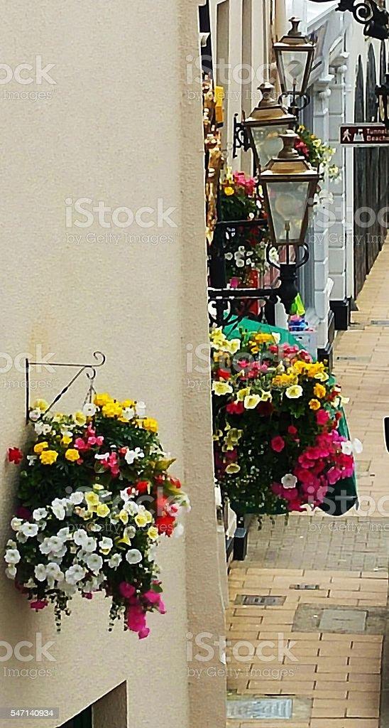 Street flowers stock photo