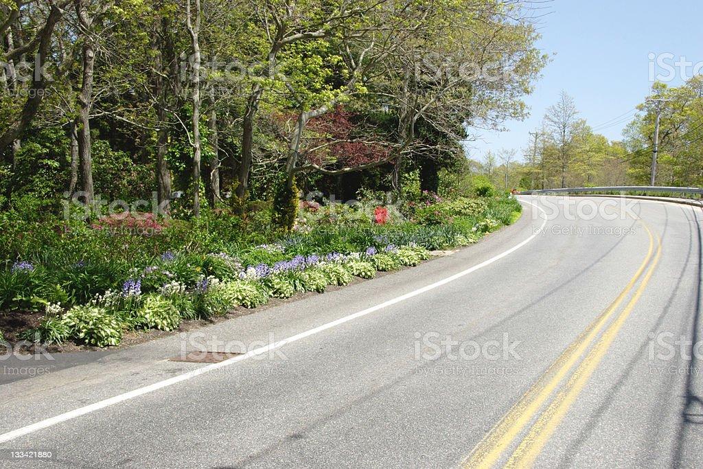 Street garden royalty-free stock photo