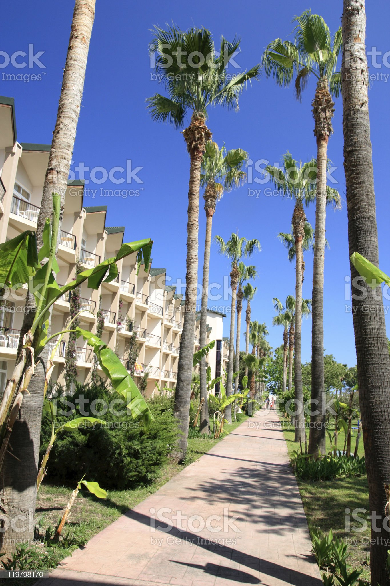 Street in a tropical town. royalty-free stock photo