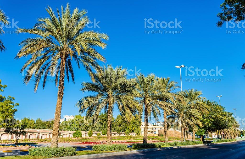 Street in Al Ain - Emirate of Abu Dhabi stock photo