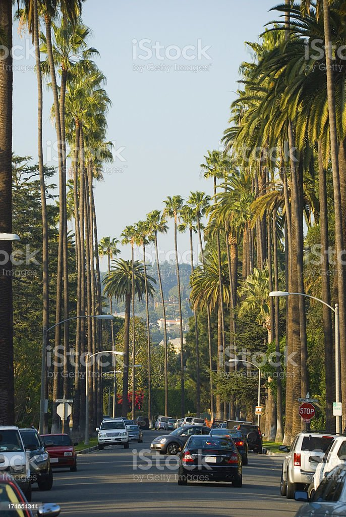 street in Beverly Hills royalty-free stock photo
