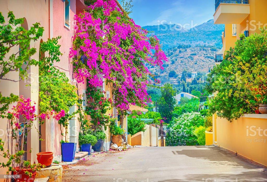 Street in Kefalonia island stock photo
