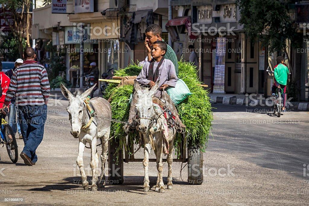 Street in Luxor, Egypt stock photo
