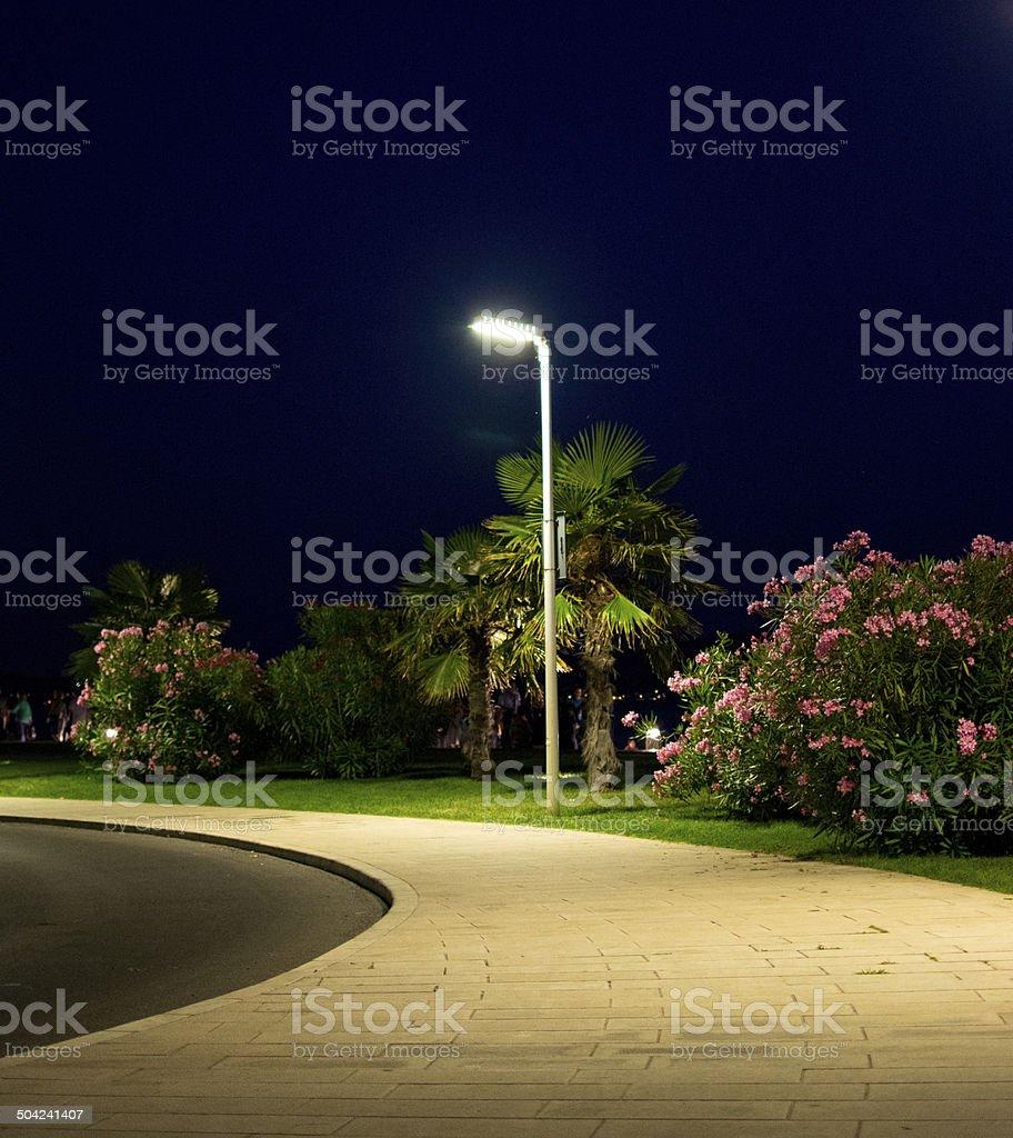 Street lamp stock photo
