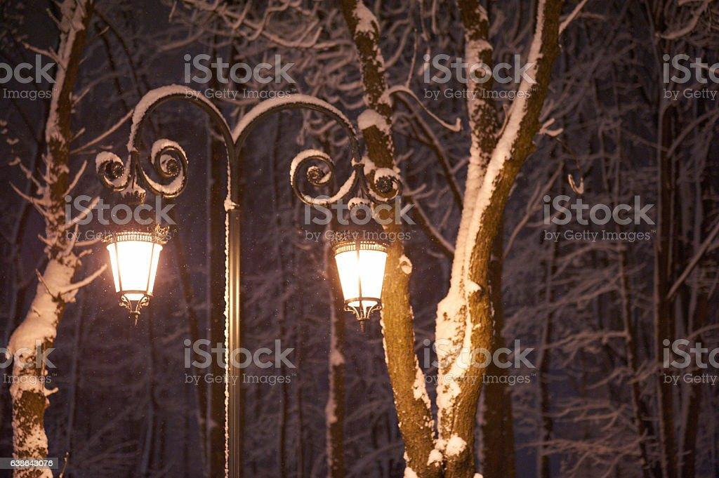 street lantern in the winter public park stock photo