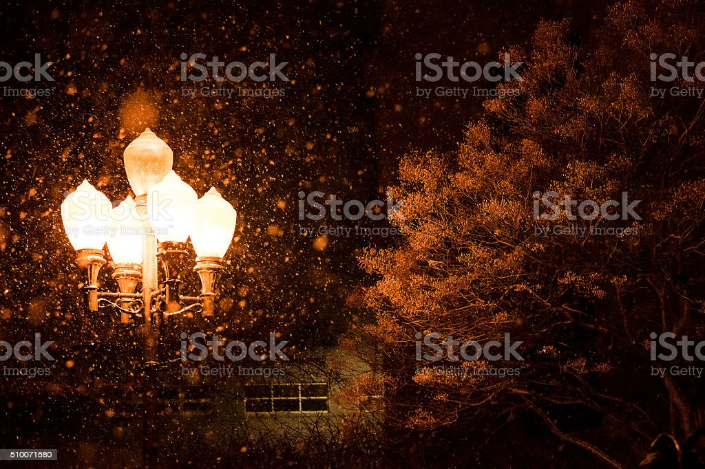 Street Lights in snow at night royalty-free stock photo