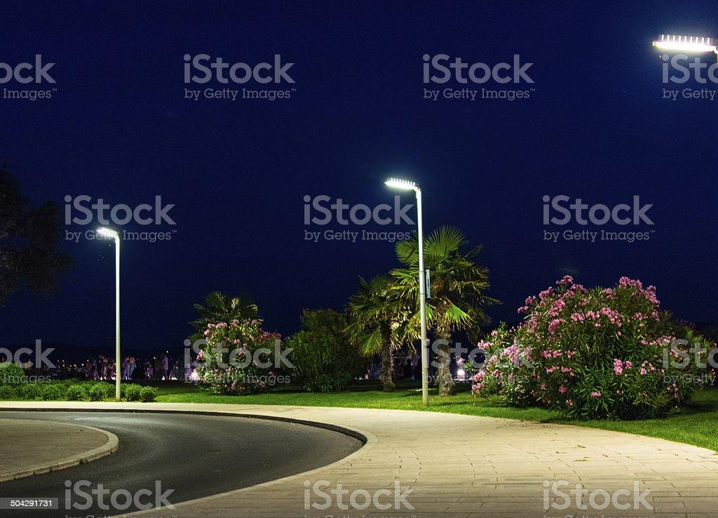 Street lights royalty-free stock photo