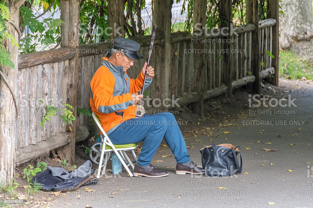 Street musicial playing the banjo in Central Park stock photo