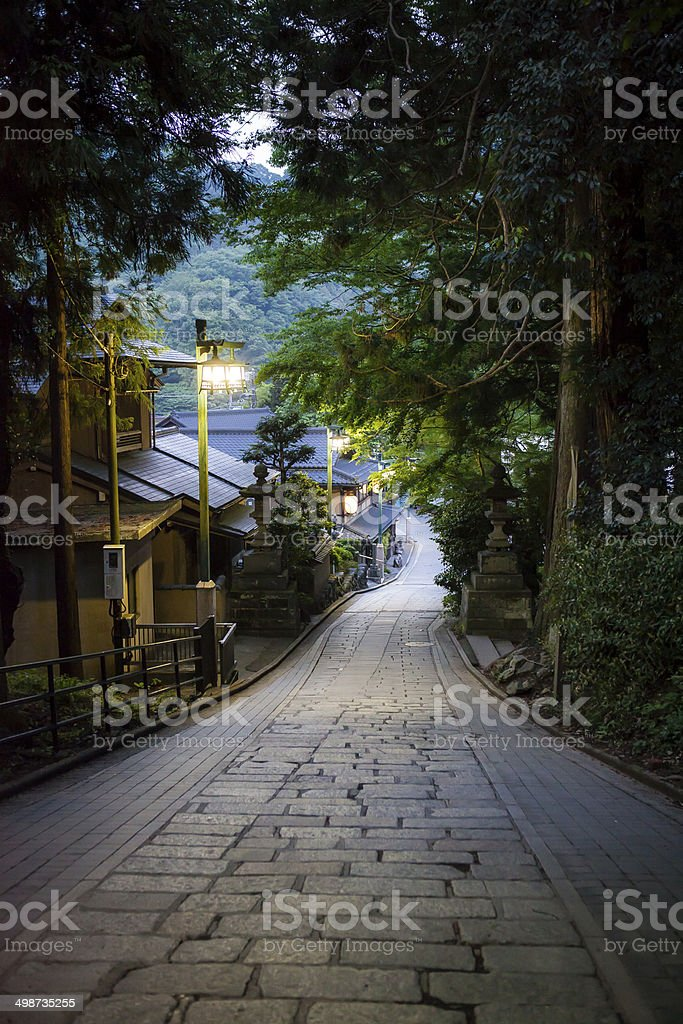 Street of the Stone Pavement among Trees. stock photo