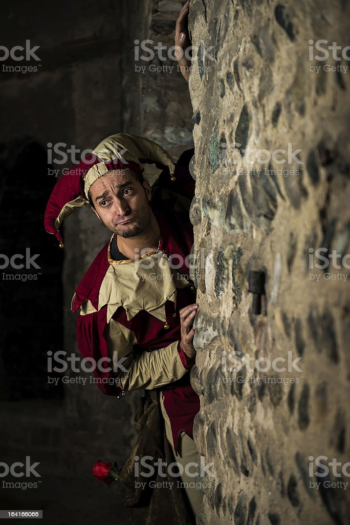 Street performer Jester royalty-free stock photo