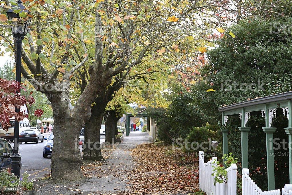Street scene in fall stock photo