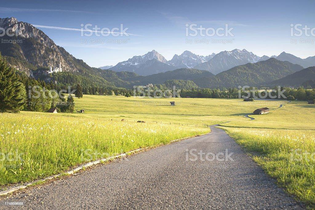 street through summer meadows, bavarian ostallgäu, bavaria, germany royalty-free stock photo
