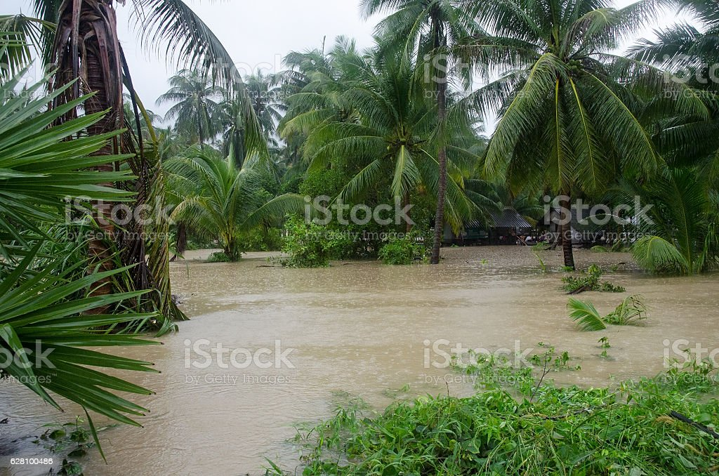 Street under flood in Koh Phangan, Thailand. stock photo